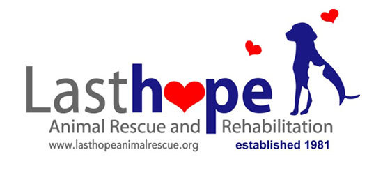 Last Hope Animal Rescue and Rehabilitation