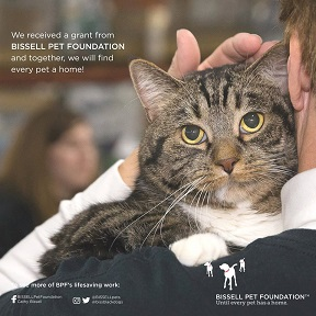 Last Hope Animal Rescue | Since 1981, Last Hope has been